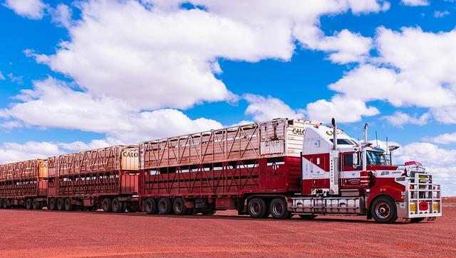 Jak spersonalizować swoją ciężarówkę?