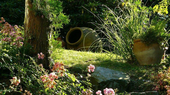 Kompleksowe usługi aranżacji ogrodów